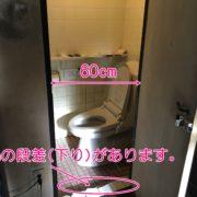 トイレ入り口幅60cm。下りの段差5cm。